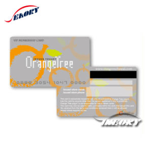 Plastic Full Color Printing Membership Card with Magnetic pictures & photos