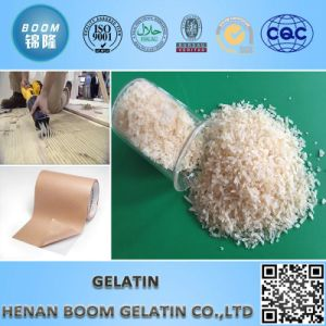 Best-Selling Edible Glue Hide Gelatin pictures & photos