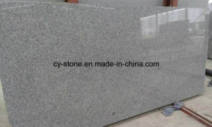 New Quarry/ Hubei G603 White Grey Granite Slab pictures & photos