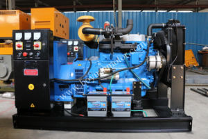 Ricardo Series Portable Power Generation 16kw~75kw pictures & photos