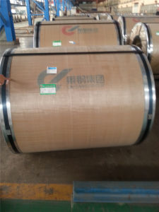 Gold Supplier Hot Selling China Factory Price Steel Coil Cold Rolled for Deep-Drawing Spce pictures & photos