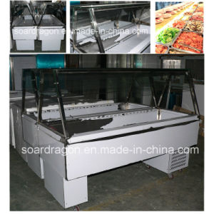 Stainless Steel Bench Fridge with Panels for Cold Dish pictures & photos