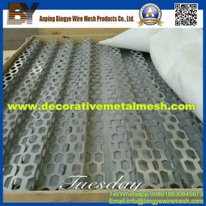 Hexagonal Perforated Metal Mesh for Wall Coverings pictures & photos