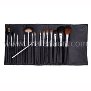 OEM 16PCS Professional Makeup Brush Set with Reasonable Price pictures & photos