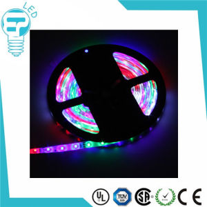 LED Strip 5050, LED Strips 12V, SMD5050 LED Strip pictures & photos