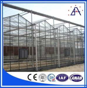 High Quality Aluminum Greenhouse/Aluminum Profile pictures & photos