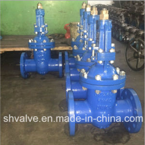 Cast Steel Rising Stem Bonnet Bolted Flange Gate Valve