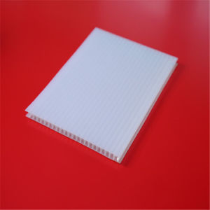 50 Micron UV Coating Clear Polycarbonate Twin Wall Hollow Sheets pictures & photos