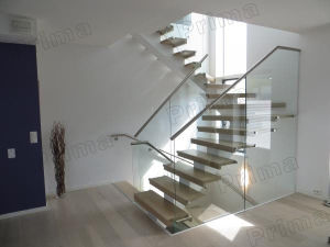 Inside Staircase Patch Fittings Glass Railing Design pictures & photos