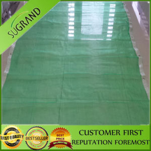 Plastic Mesh Scaffold Safety Net pictures & photos