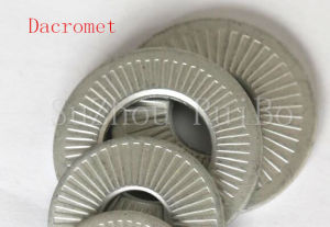 Nfe 25511 Fastener Gasket Lock/Spring Washer/Washers pictures & photos