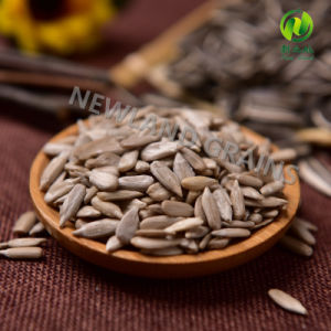 Chinese Hot Sale Sunflower Seeds Kernels with Hgih Quality for Confectionary pictures & photos