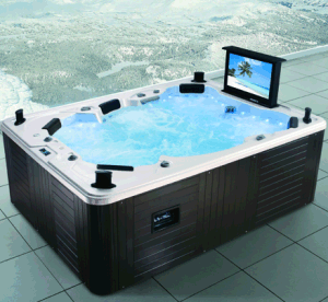 Outdoor 6 People USA Balboa Jacuzzi Hot Tub pictures & photos