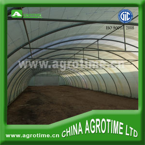 Single Tunnel Greenhouse for Sale