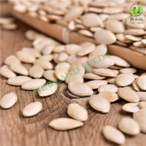 Chinese Shine Skin Pumpkin Seeds pictures & photos