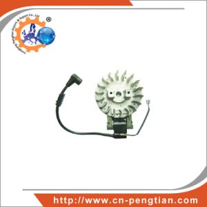 Ignition Coil and Flywheel of Gasoline Chain Saw Engine Spare Parts Power Garden Tools pictures & photos