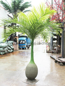 Fireproof Artificial Bottle Palm Tree for Home Decoration pictures & photos