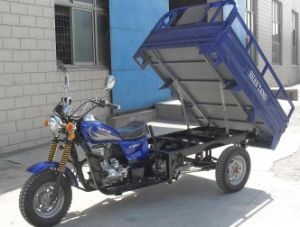 200cc Motor Cargo CE EEC Tricycle (SY200ZH-E) pictures & photos