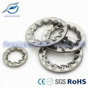 Tooth Lockwasher / Serrated Washer (DIN6798) pictures & photos
