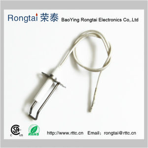 Ceramics Ignition Electrode and Wire pictures & photos