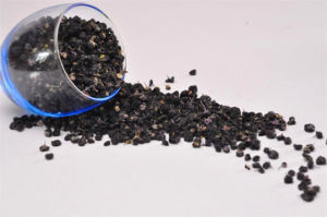 Ningxia Black Goji Berry (Wolfberry) -Nature pictures & photos