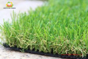 Garden Grass Natural Grass Carpet Grass for Decoration pictures & photos