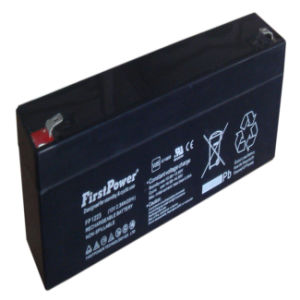 Back-up Battery (FP1223) pictures & photos