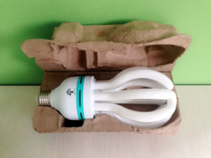 55W 65W 85W 105W Lotus CFL Energy Saving Lamp pictures & photos