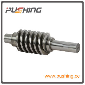 Precision Worm Shaft for Auto Parts