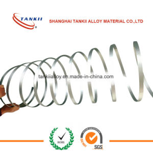 Constantan Eureca Wire / Flat Wire/Ribbon pictures & photos