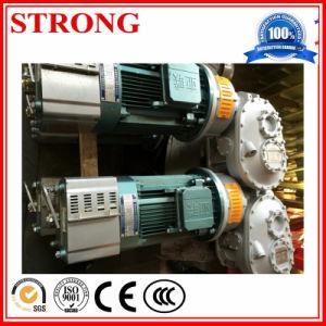 Construction Hoist Electric Hoist Motor pictures & photos