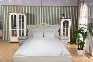 Comfortable Multihole Tencel Quilt/Duvet Cheap Wholesale pictures & photos