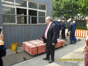 Sale Copper Cathode 99.99% Purity in Copper Products-1 pictures & photos