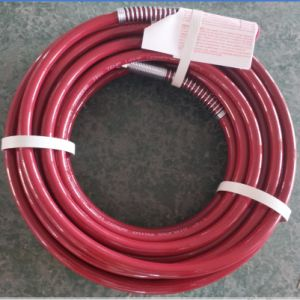 Hot Sell Spray Hose pictures & photos