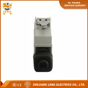 Lema Short Hinge Lever 10A 250VAC CCC Ce Approvals Lz5110 Sealed Limit Switch pictures & photos