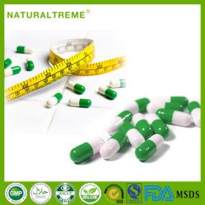 Best Share L-Carnitine Powder Diet Pills Weight Loss pictures & photos