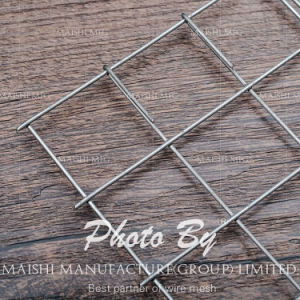 PVC Coated Galvanized Welded Wire Mesh (ISO9001: 2008) pictures & photos