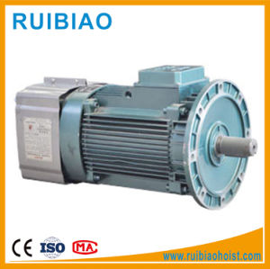 3 Phase Electric Construction Hoist Motor pictures & photos