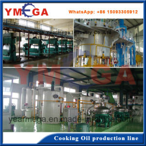 Turkey Project Complete Vegetable Seeds Edible Oil Production Line pictures & photos