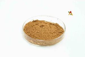 Natural Jatrorrhizine Hydrochloride Tinospora Sagittata Extract