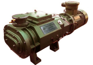 Horizontal Oil Free Dry Screw Industrial Water Cooling Vacuum Pump (DSHS-50) pictures & photos
