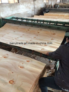 1270mm-2520mm Pine Veneer for Plywood pictures & photos