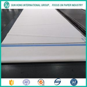 Paper Machine Clothing/ Polyester Forming Belt/Dryer Cloth/Press Felt pictures & photos