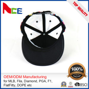 Customized Logo Printed Fashion Hat (ACEW099) pictures & photos