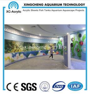 Customized Aquarium Sheet Acrylic Material Shark Tank Project Price pictures & photos