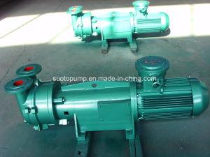 2BV6 111 Liquid Ring Vacuum Pump pictures & photos