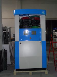 LPG Dispenser Rt-LPG124k LPG Dispenser pictures & photos