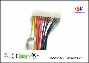 Customized Electric 20 Pin Wire Harness with Molex Connector pictures & photos