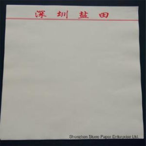 Stone Paper (RPD-100) Rich Mineral Paper Double Coated-100um pictures & photos