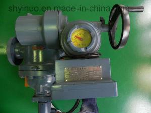 Auto Batch Control Flow Meter (LZDZ) pictures & photos